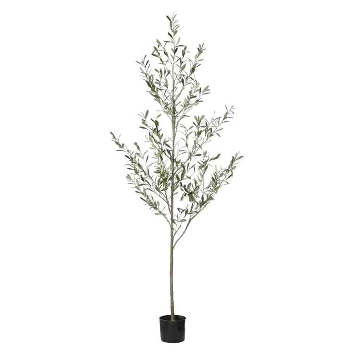 Potted Artificial Olive Tree, 200cm by Rogue, a Plants for sale on Style Sourcebook