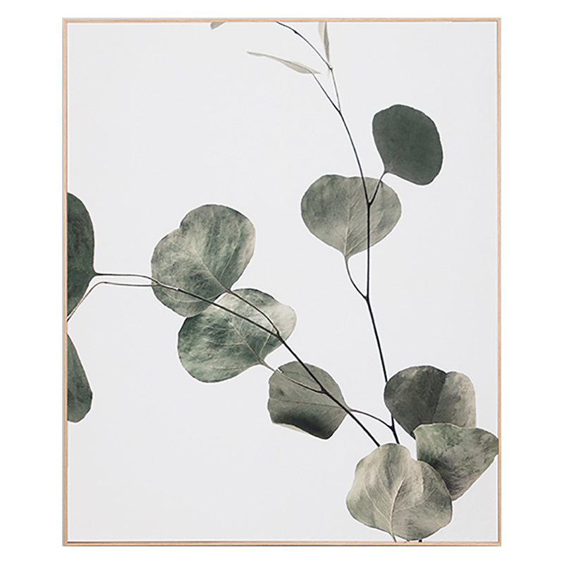 Eucalyptus Branch 2 Box Framed Canvas in 100x120cm by OzDesignFurniture, a Prints for sale on Style Sourcebook