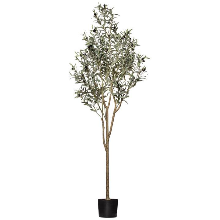 Potted Artificial Olive Tree, 180cm-II by Rogue, a Plants for sale on Style Sourcebook