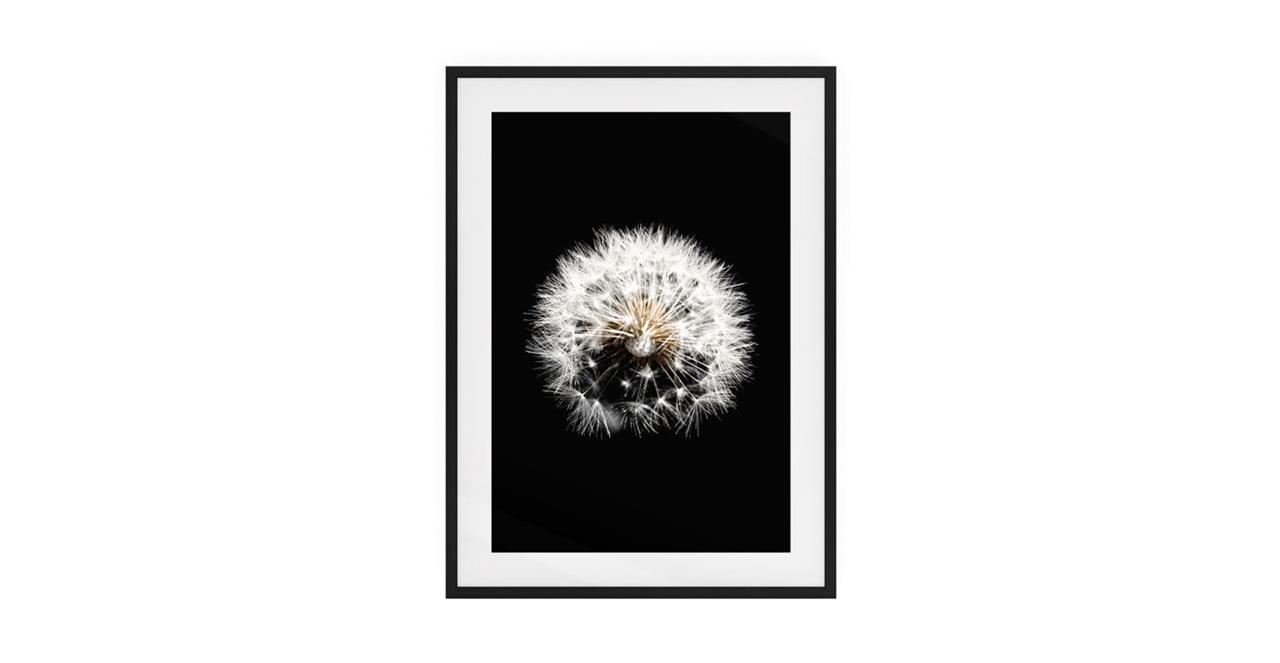 The Dandelion Print Black Wood Frame Small Three