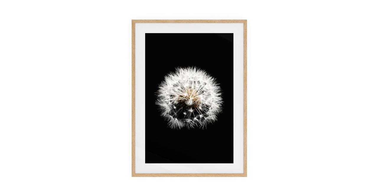 The Dandelion Print Natural Wood Frame Small Three