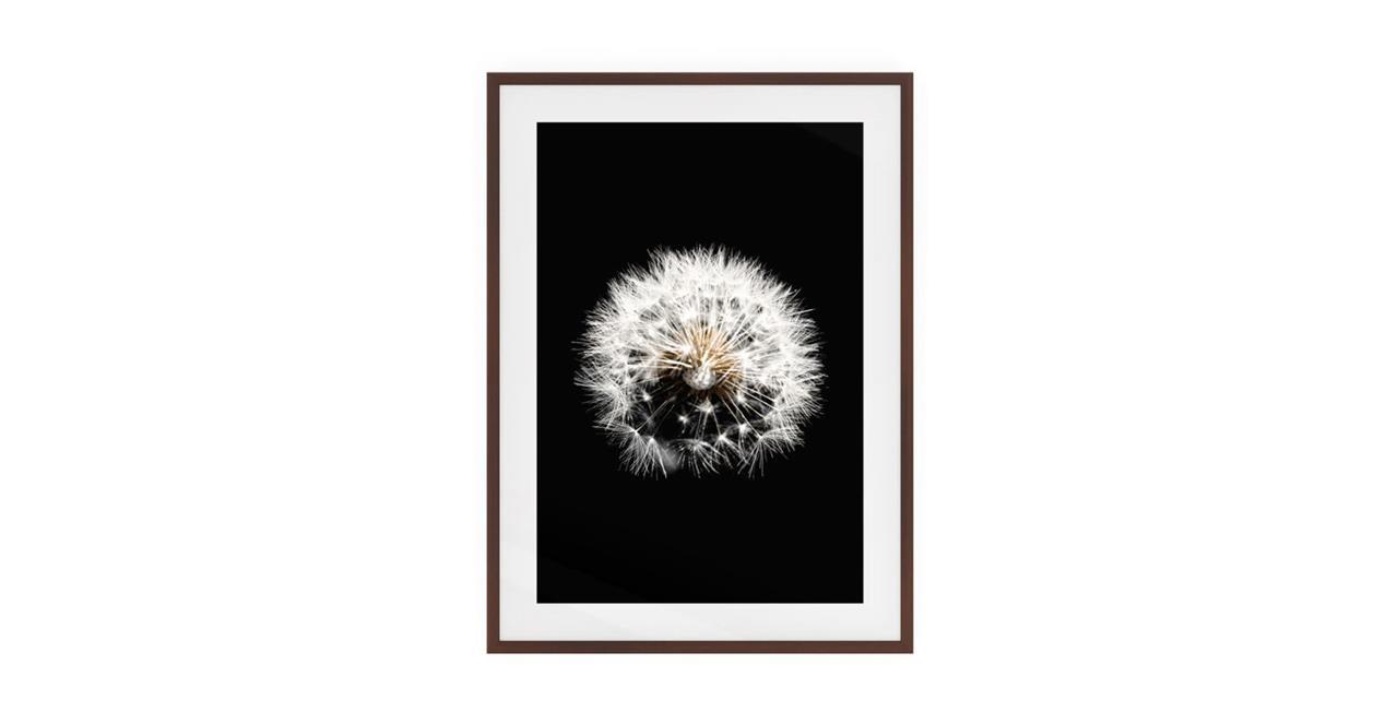 The Dandelion Print Dark Brown Wood Frame Small Three