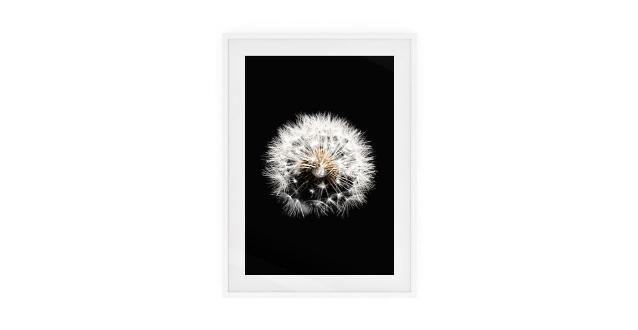 The Dandelion Print White Wood Frame Medium Three