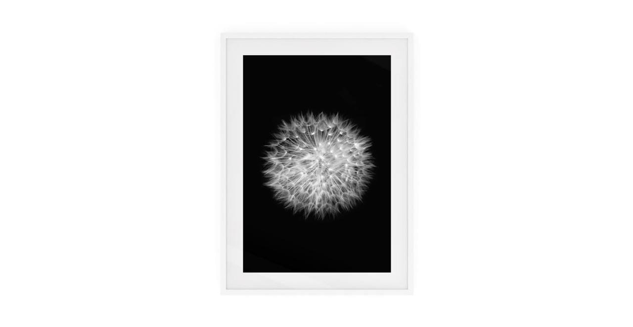 The Dandelion Print White Wood Frame Small Two