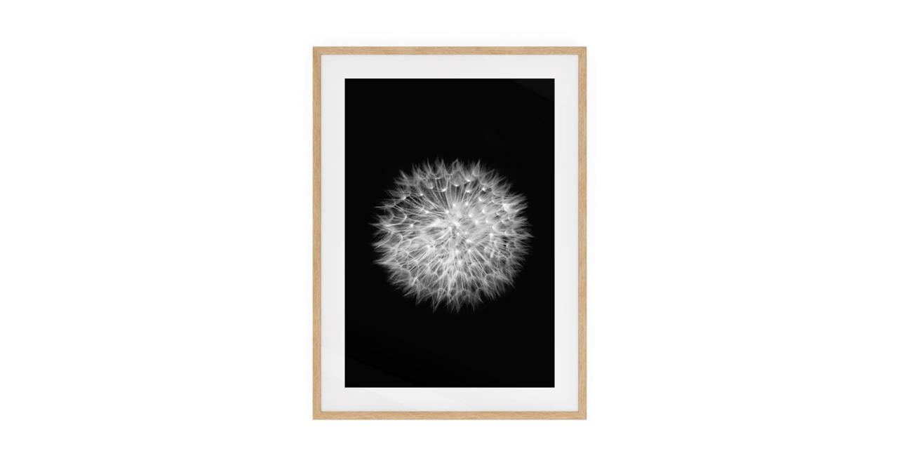 The Dandelion Print Natural Wood Frame Small Two