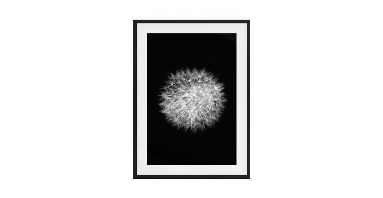 The Dandelion Print Black Wood Frame Medium Two