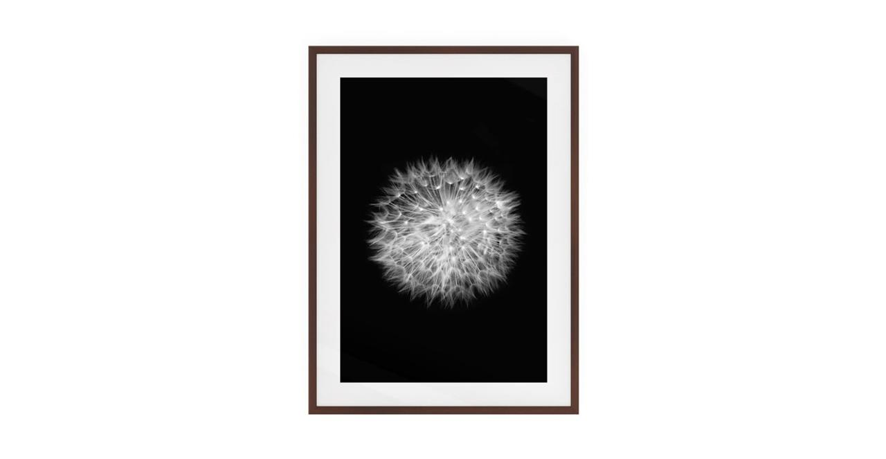 The Dandelion Print Dark Brown Wood Frame Medium Two