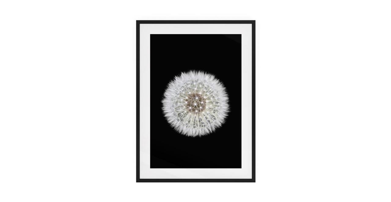 The Dandelion Print Black Wood Frame Small One