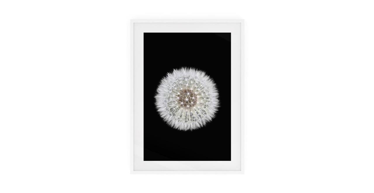 The Dandelion Print White Wood Frame Small One