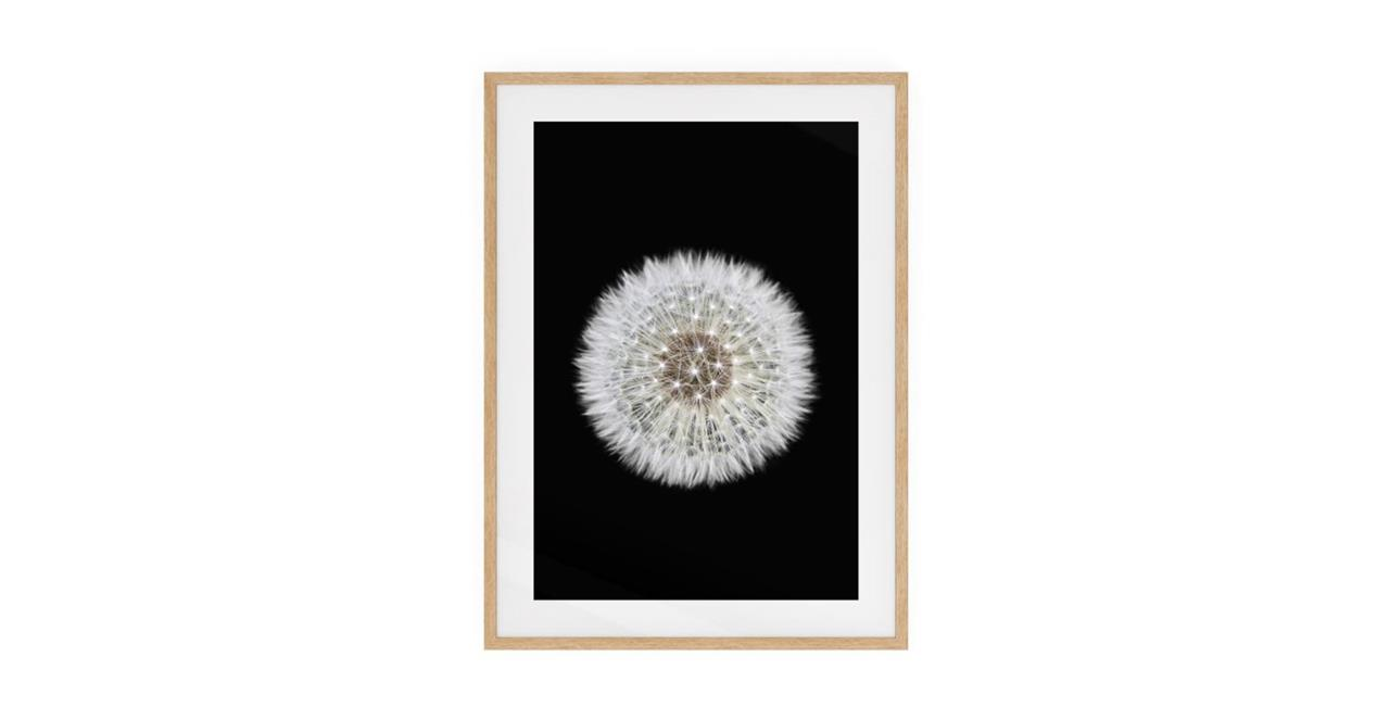The Dandelion Print Natural Wood Frame Small One