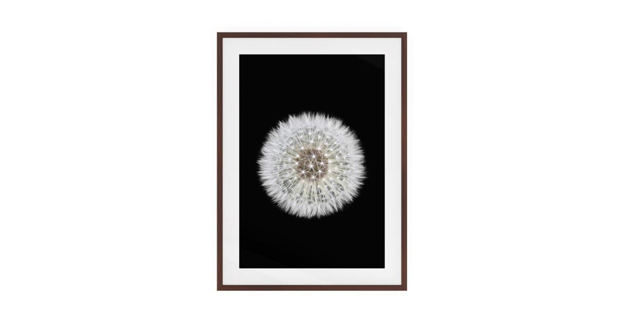 The Dandelion Print Dark Brown Wood Frame Small One