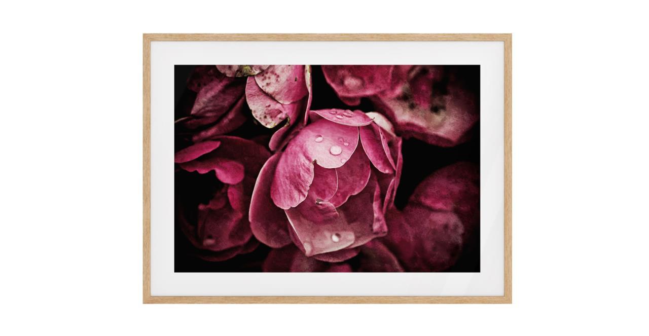The Dew Drop Print Natural Wood Frame Medium
