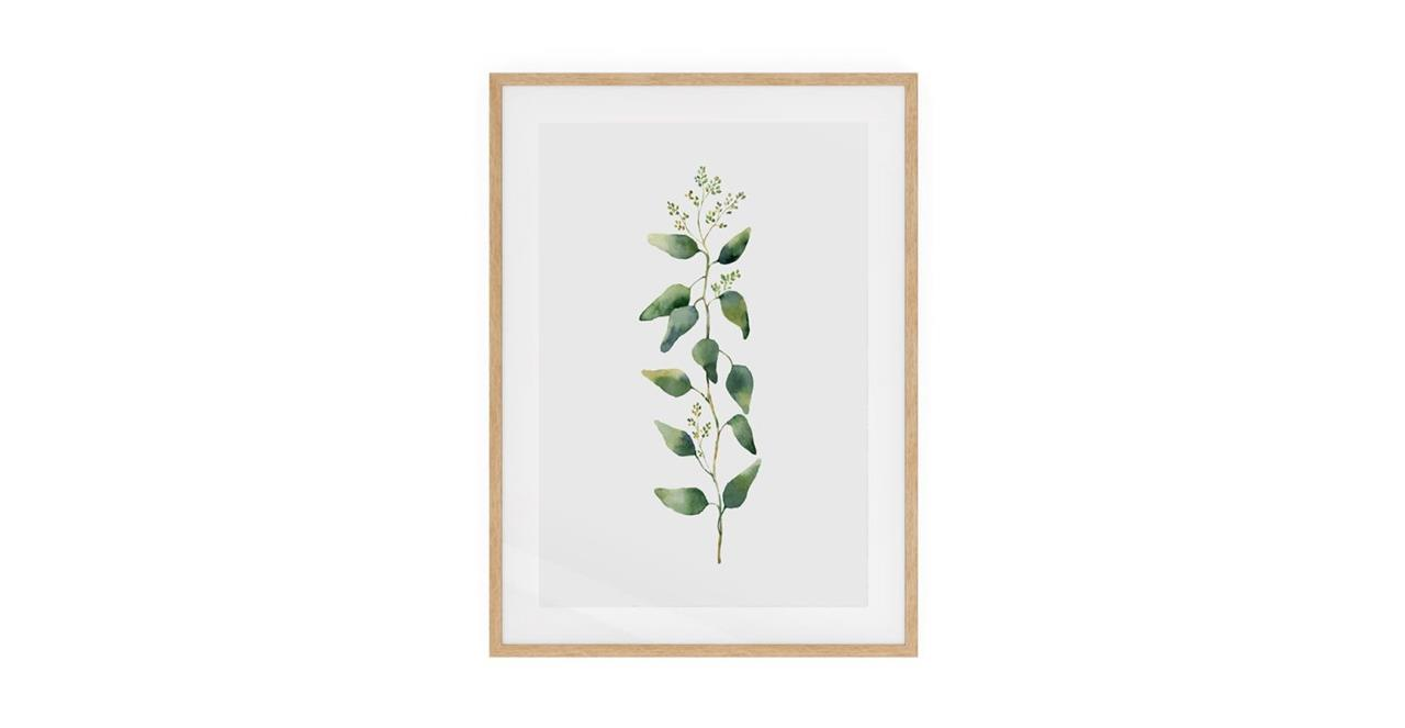 The Eucalyptus Print Natural Wood Frame Small Branch
