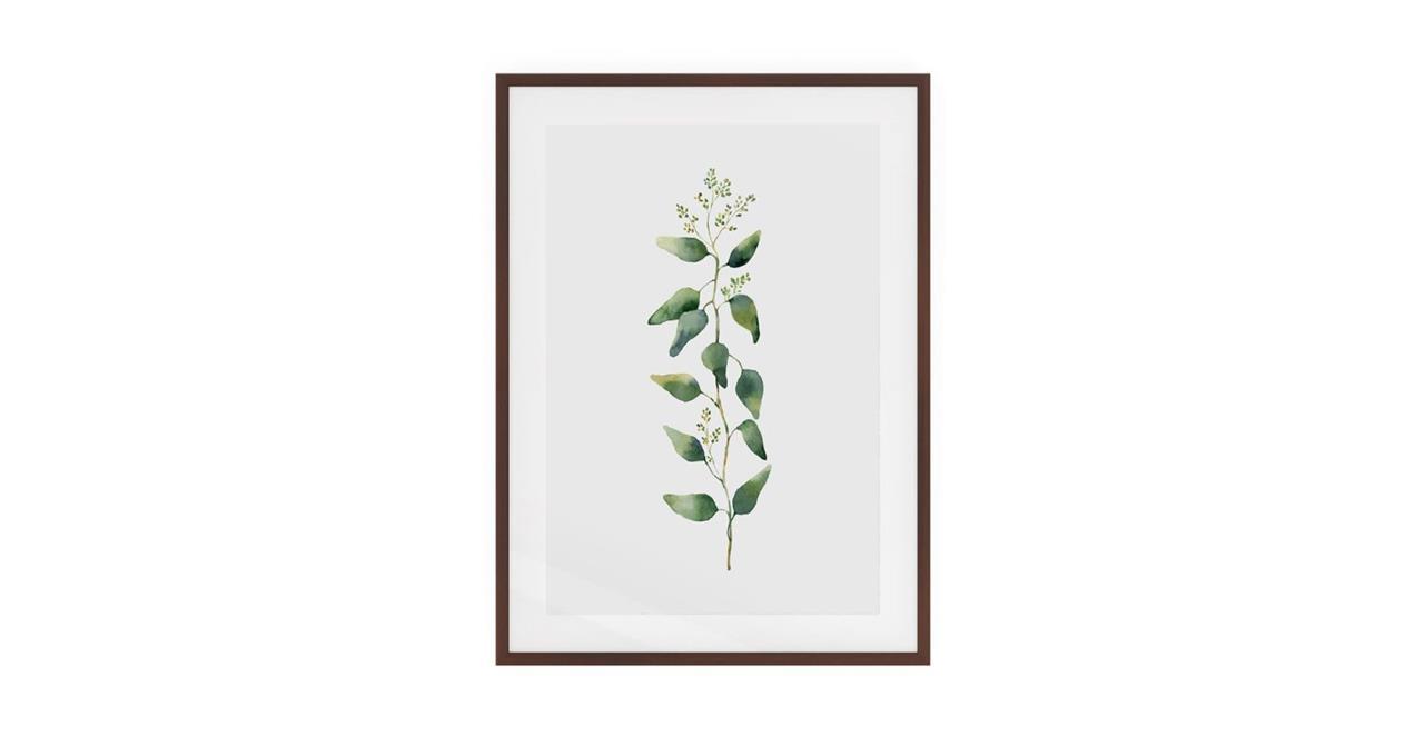 The Eucalyptus Print Dark Brown Wood Frame Small Branch