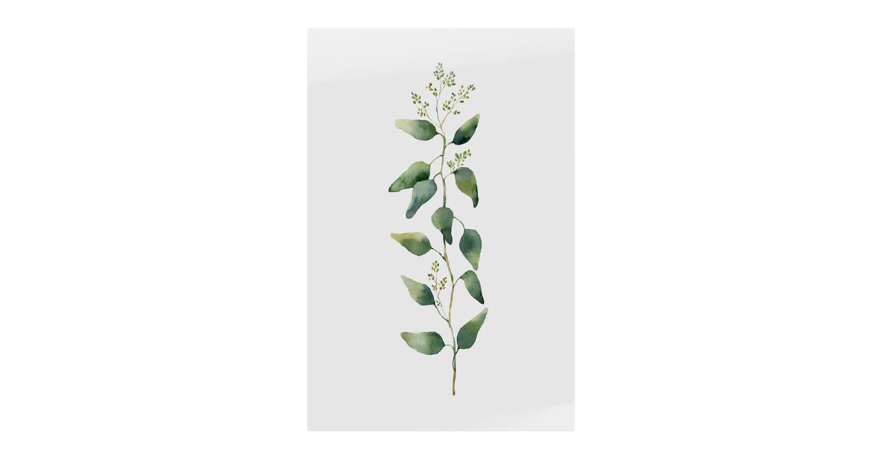 The Eucalyptus Print Metal Print Small Branch
