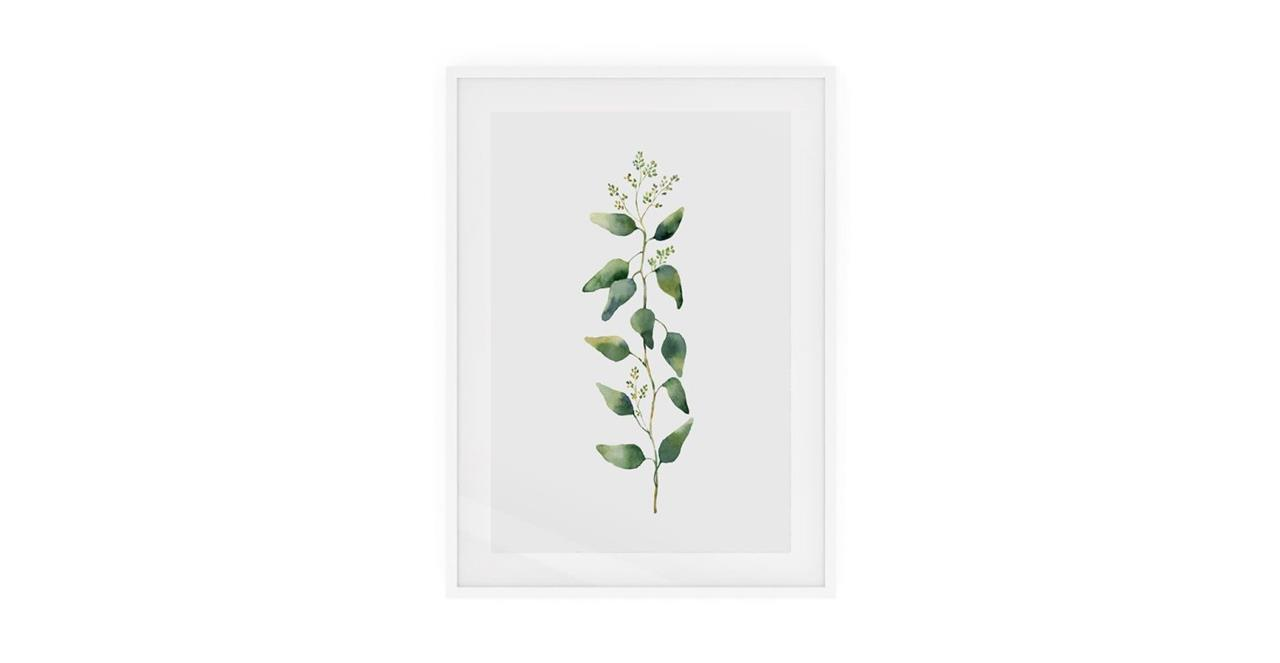 The Eucalyptus Print White Wood Frame Medium Branch