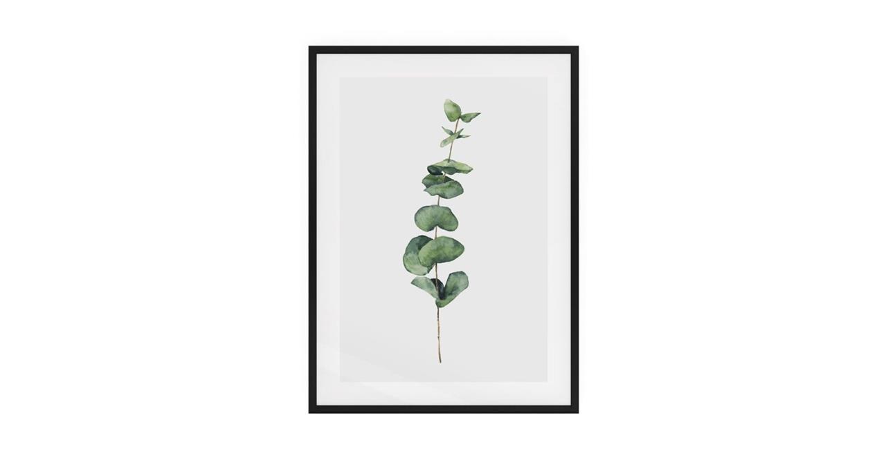 The Eucalyptus Print Black Wood Frame Medium Seeded