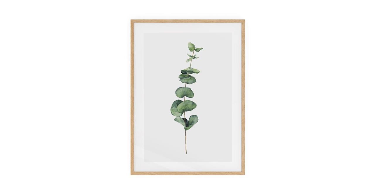 The Eucalyptus Print Natural Wood Frame Medium Seeded