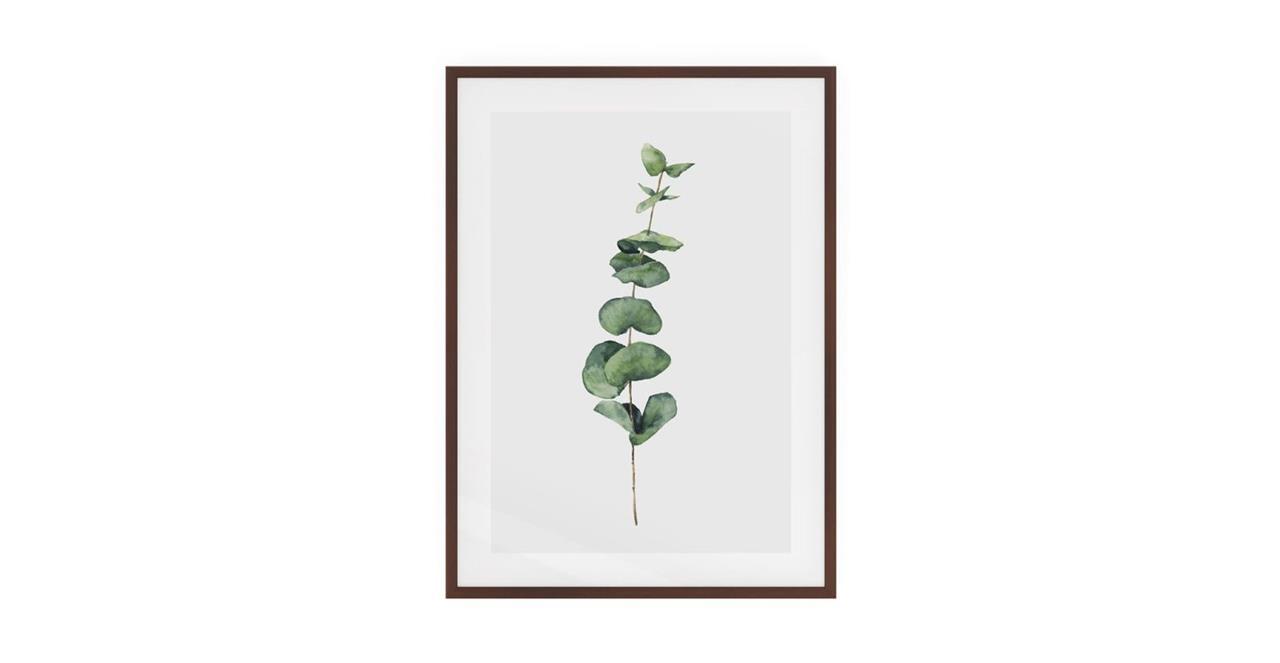 The Eucalyptus Print Dark Brown Wood Frame Medium Seeded