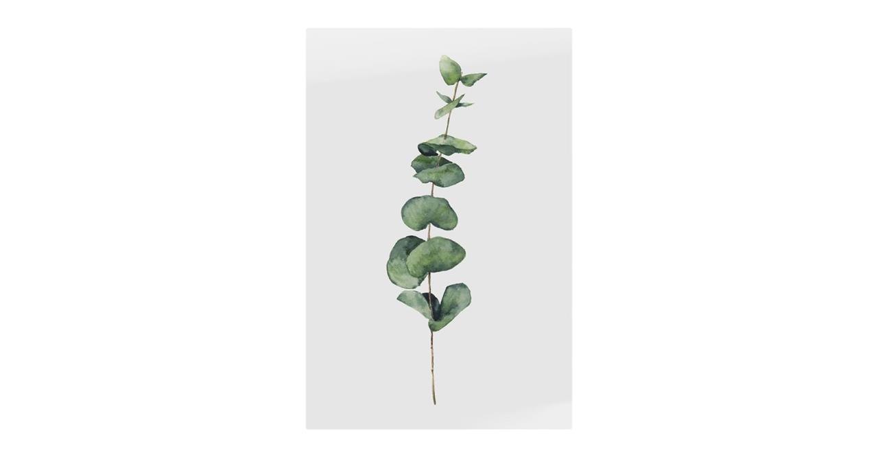 The Eucalyptus Print Metal Print Medium Seeded