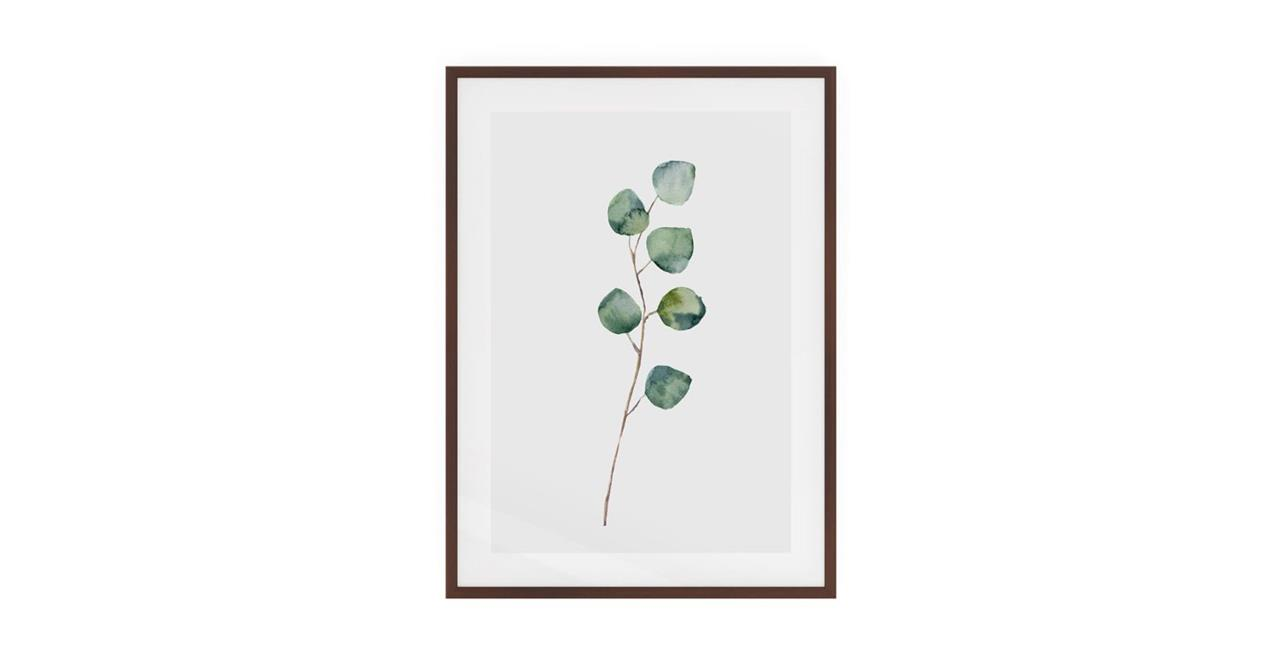 The Eucalyptus Print Dark Brown Wood Frame Small Silver Dollar