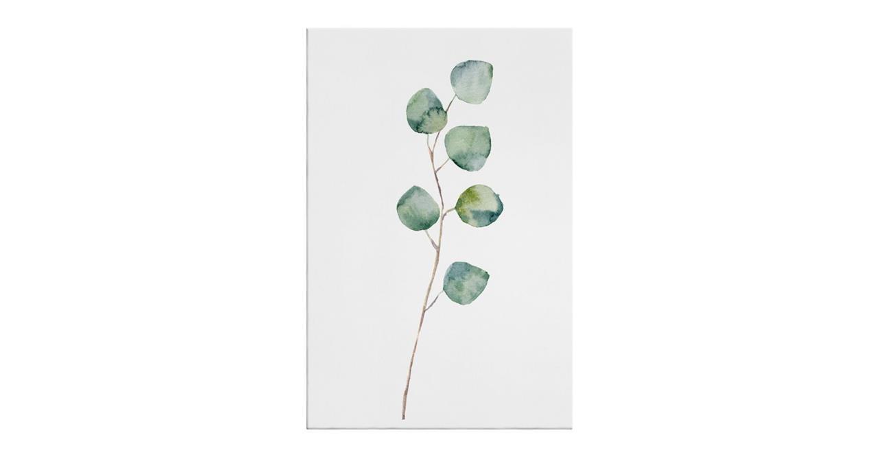 The Eucalyptus Print Canvas Small Silver Dollar