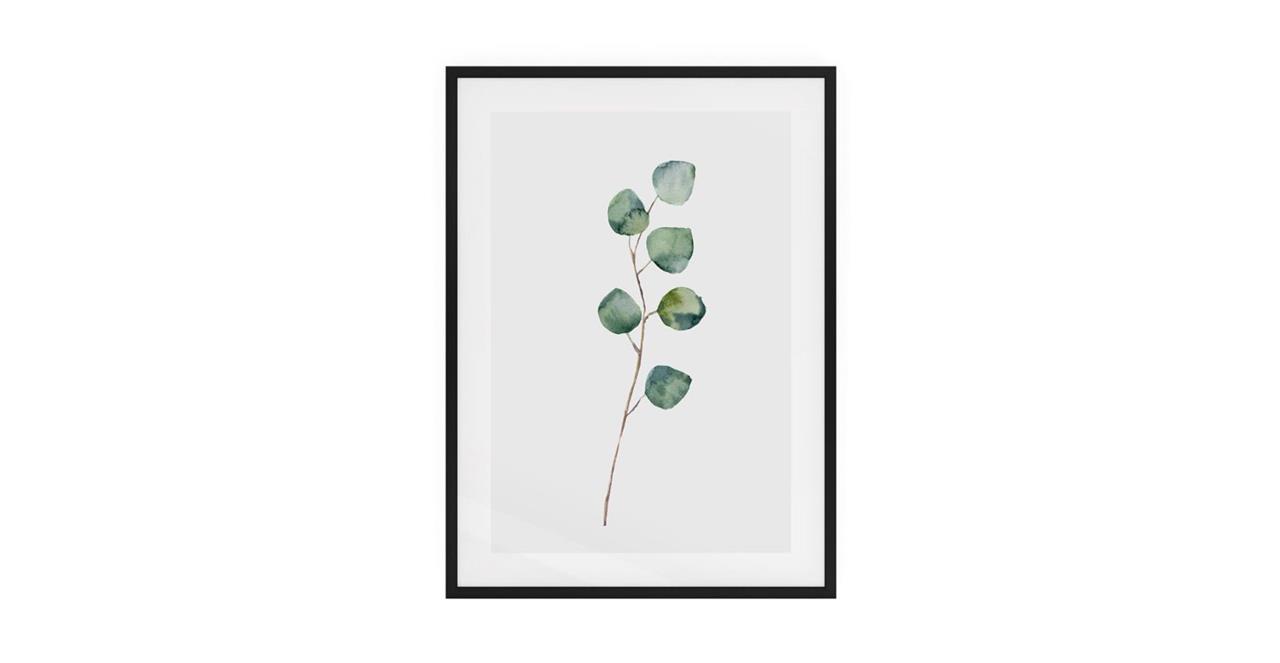 The Eucalyptus Print Black Wood Frame Medium Silver Dollar