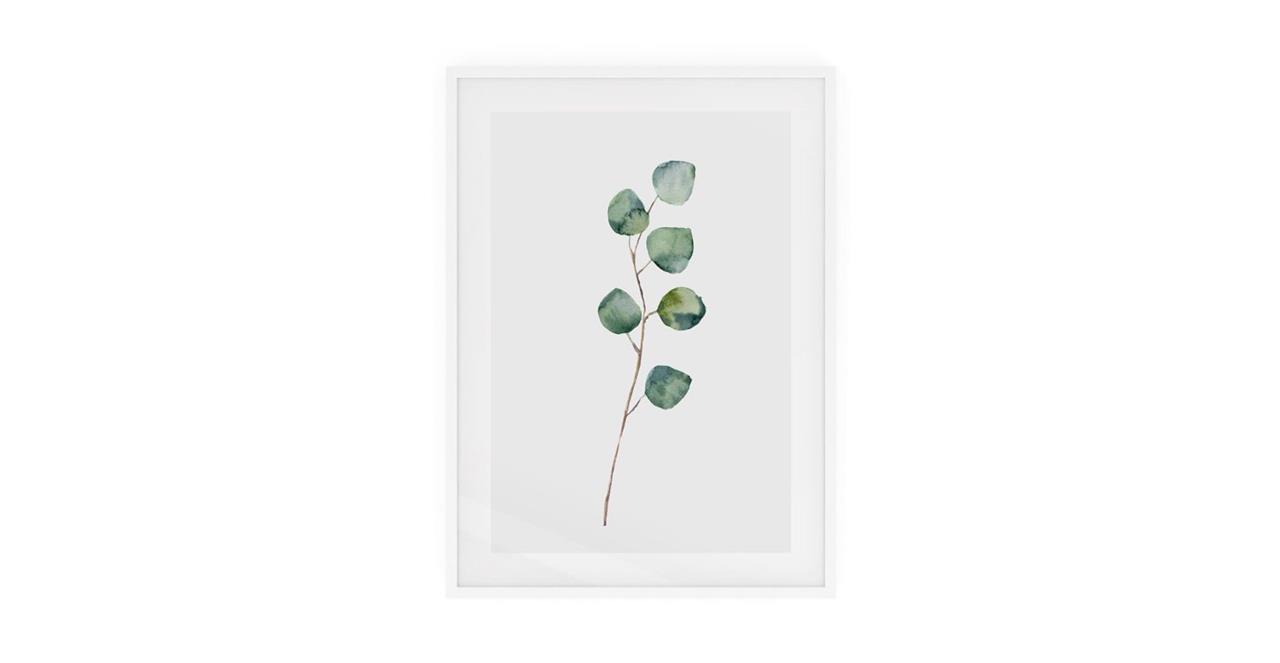 The Eucalyptus Print White Wood Frame Medium Silver Dollar