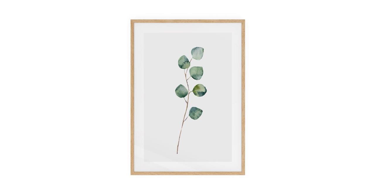 The Eucalyptus Print Natural Wood Frame Medium Silver Dollar
