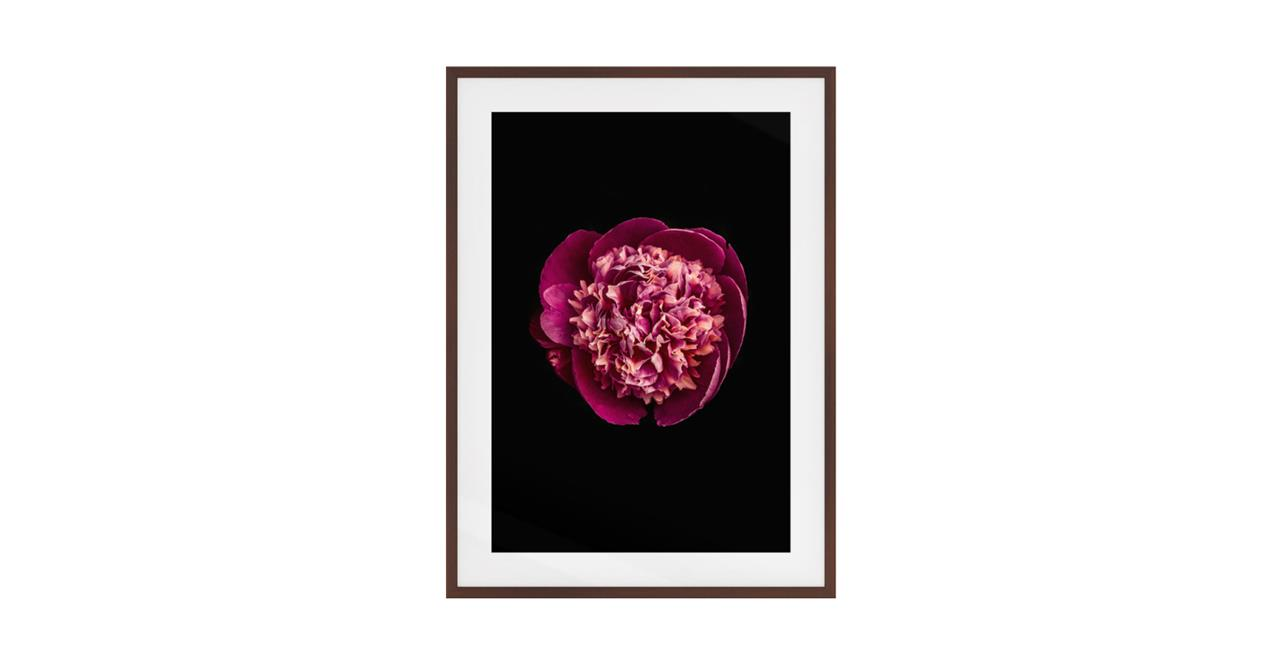 The Peony Print Dark Brown Wood Frame Small