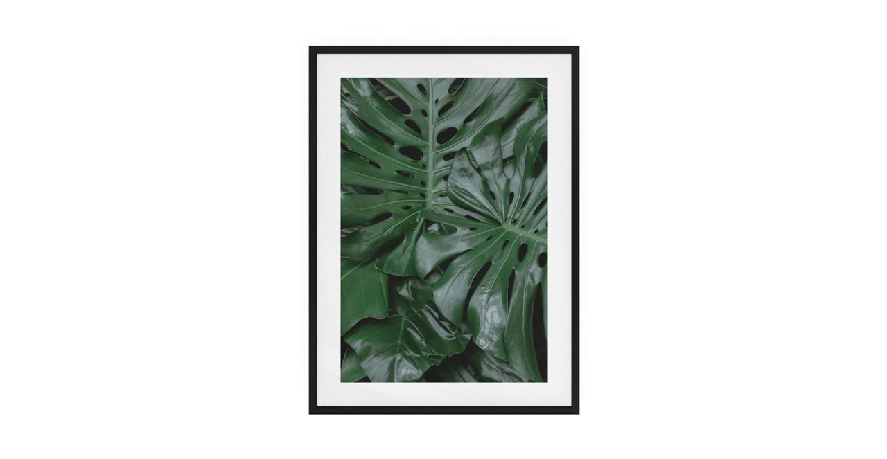The Philodendron Print Black Wood Frame Small