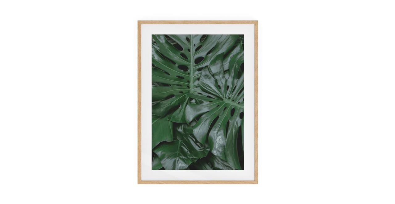 The Philodendron Print Natural Wood Frame Small