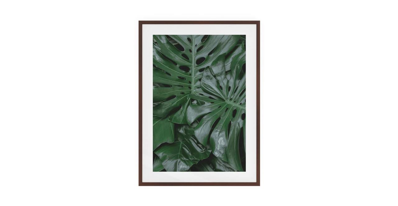 The Philodendron Print Dark Brown Wood Frame Small