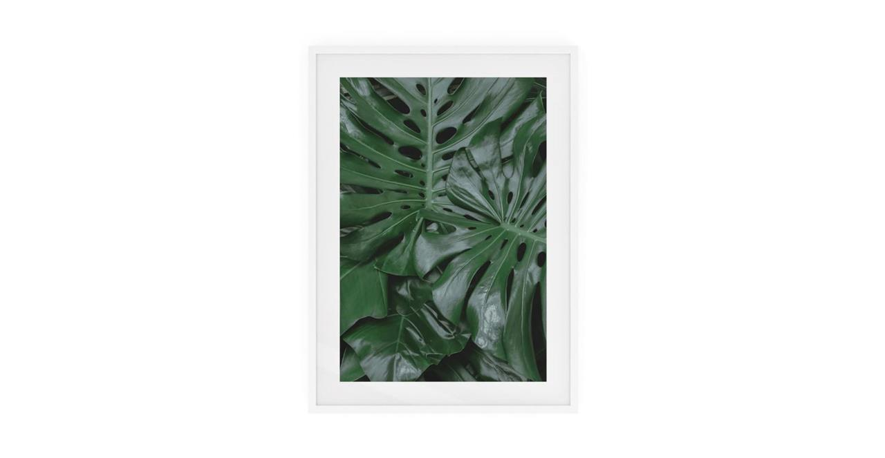 The Philodendron Print White Wood Frame Medium