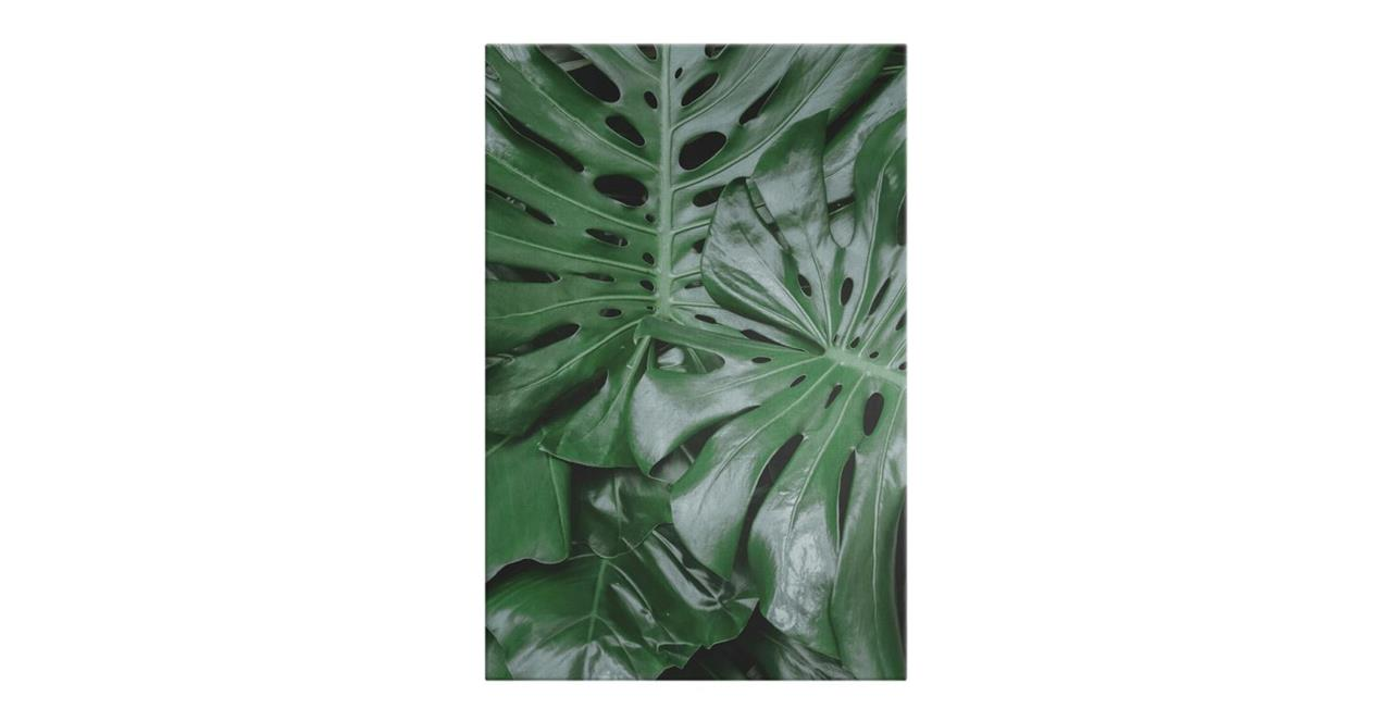 The Philodendron Print Canvas Medium