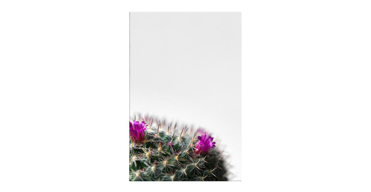 The Prickle Print Canvas Small Left
