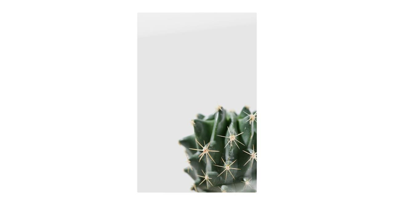 The Prickle Print Metal Print Small Right