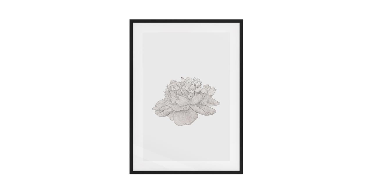 The Flowering Print Black Wood Frame Small Cream