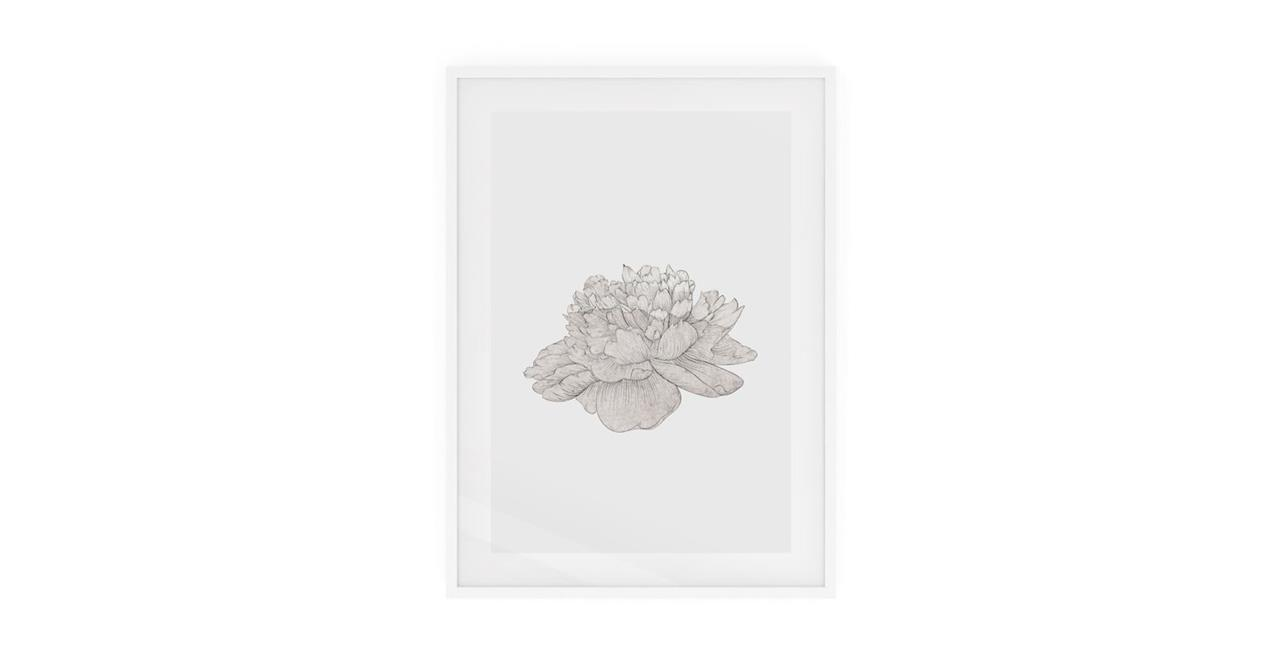 The Flowering Print White Wood Frame Small Cream