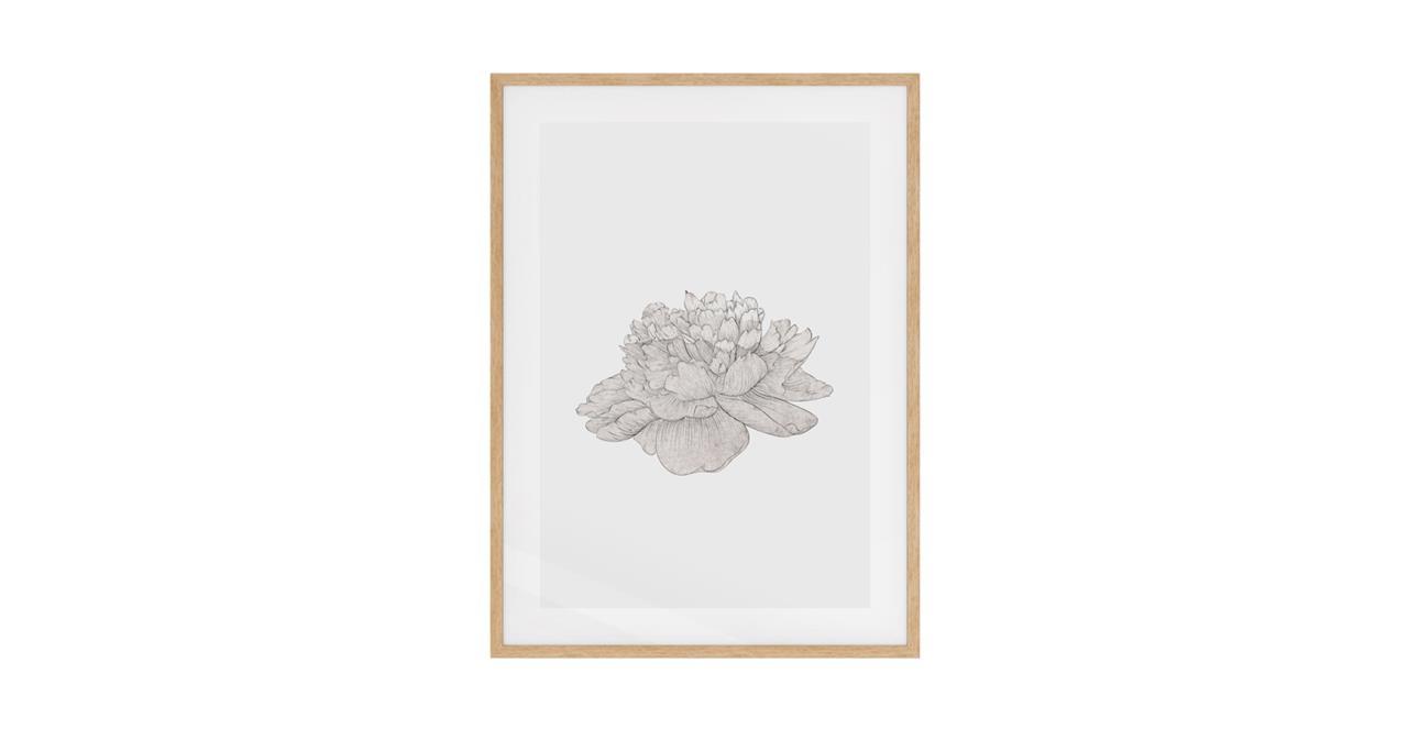 The Flowering Print Natural Wood Frame Medium Cream