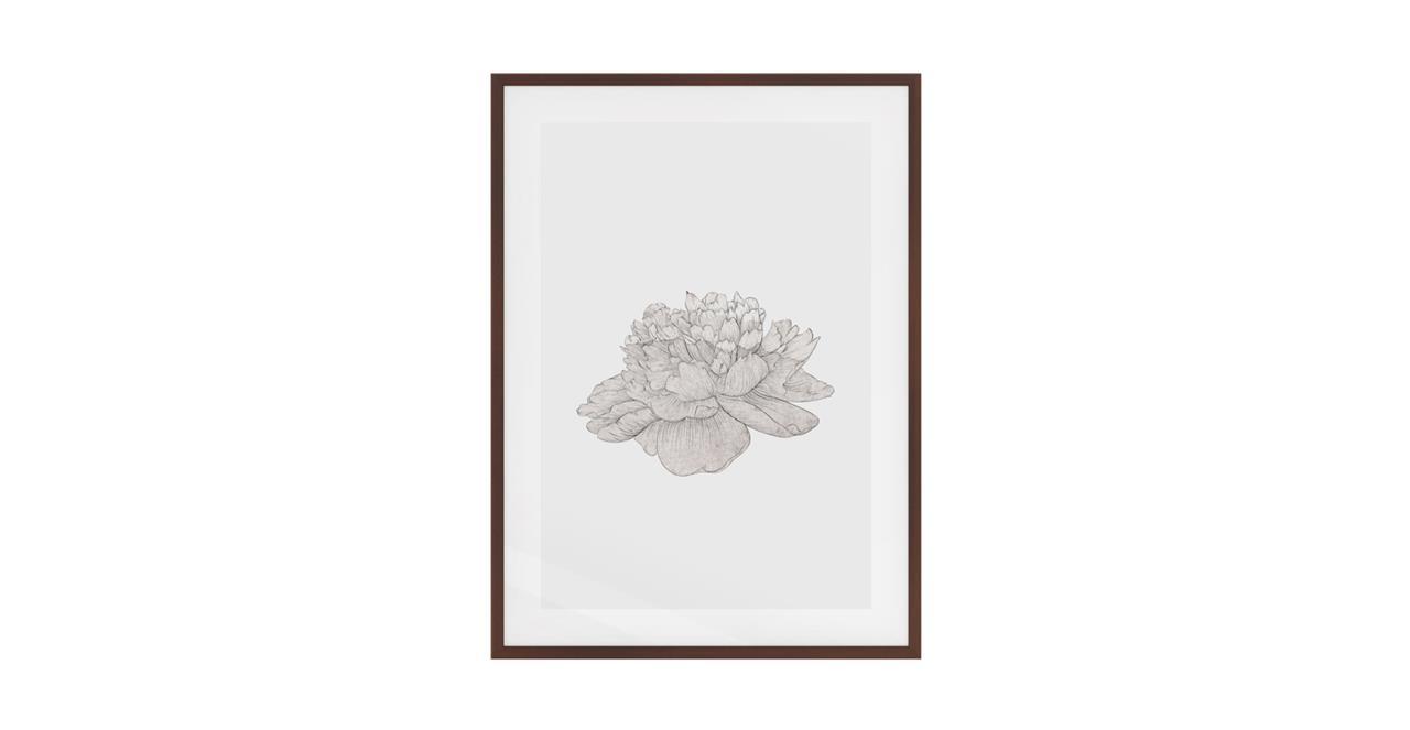 The Flowering Print Dark Brown Wood Frame Medium Cream