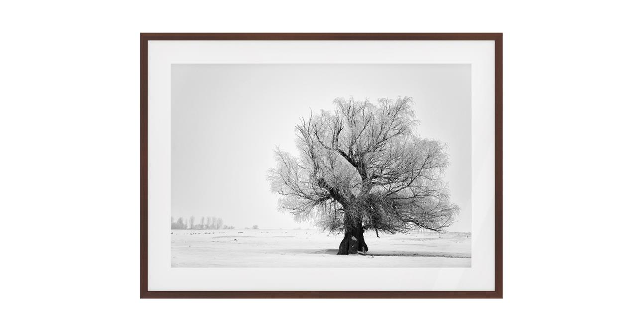 The Frost Print Dark Brown Wood Frame Small