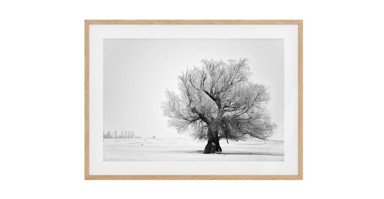 The Frost Print Natural Wood Frame Medium
