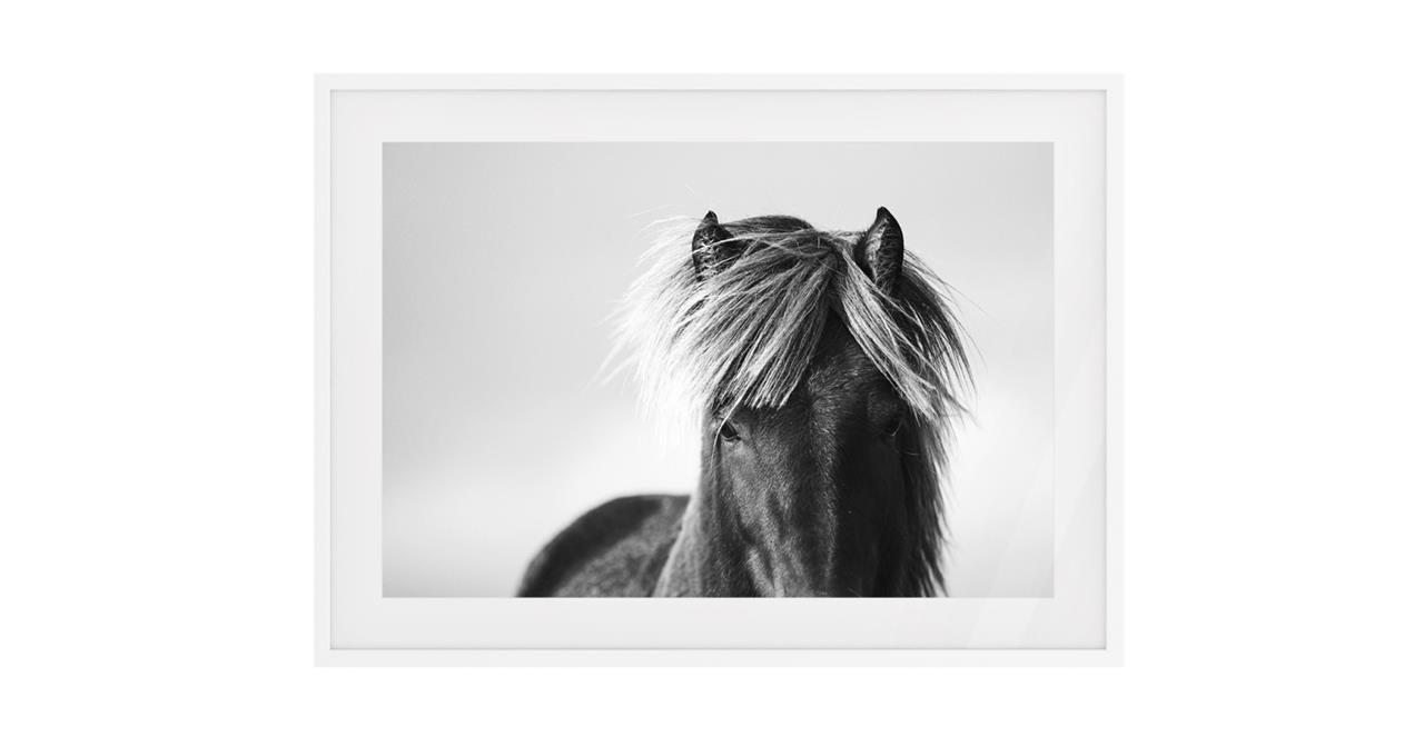 The Gallop Print White Wood Frame Small