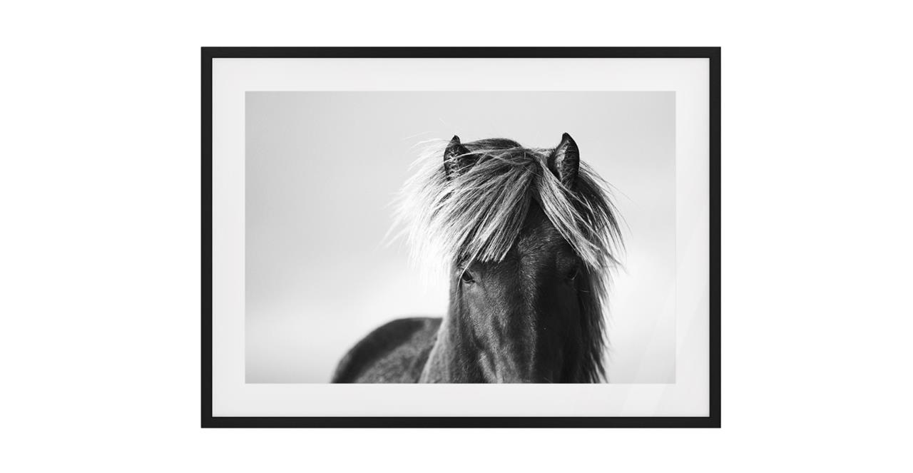 The Gallop Print Black Wood Frame Medium