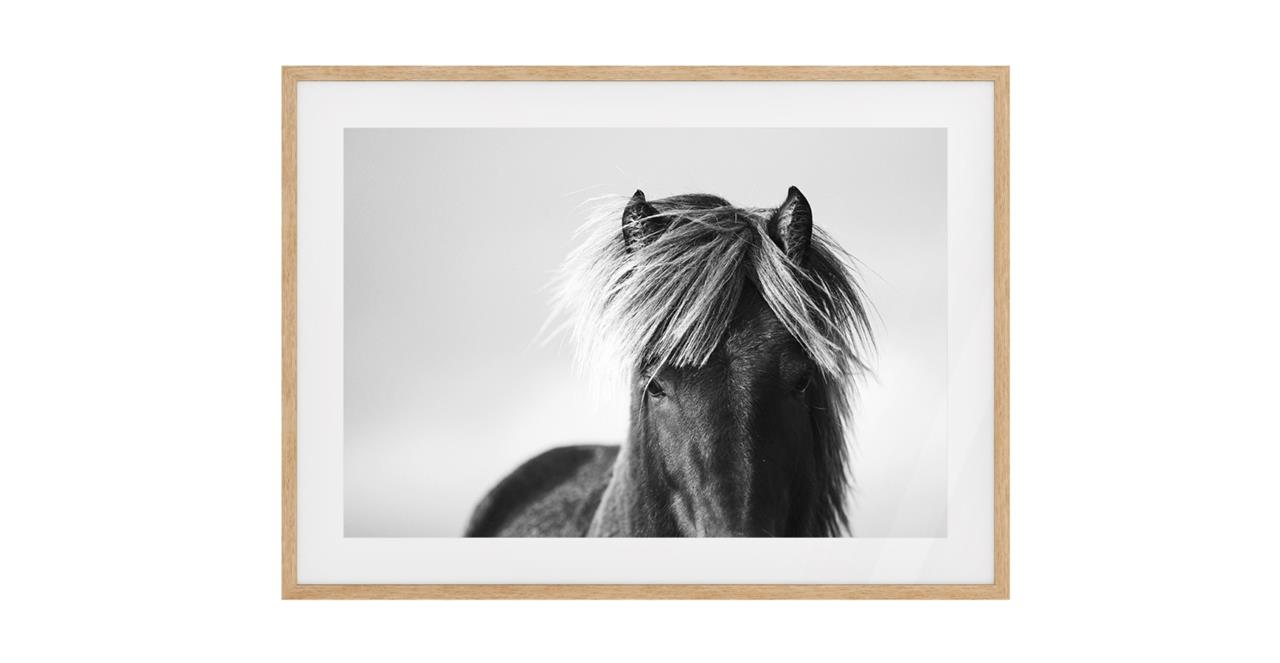 The Gallop Print Natural Wood Frame Medium
