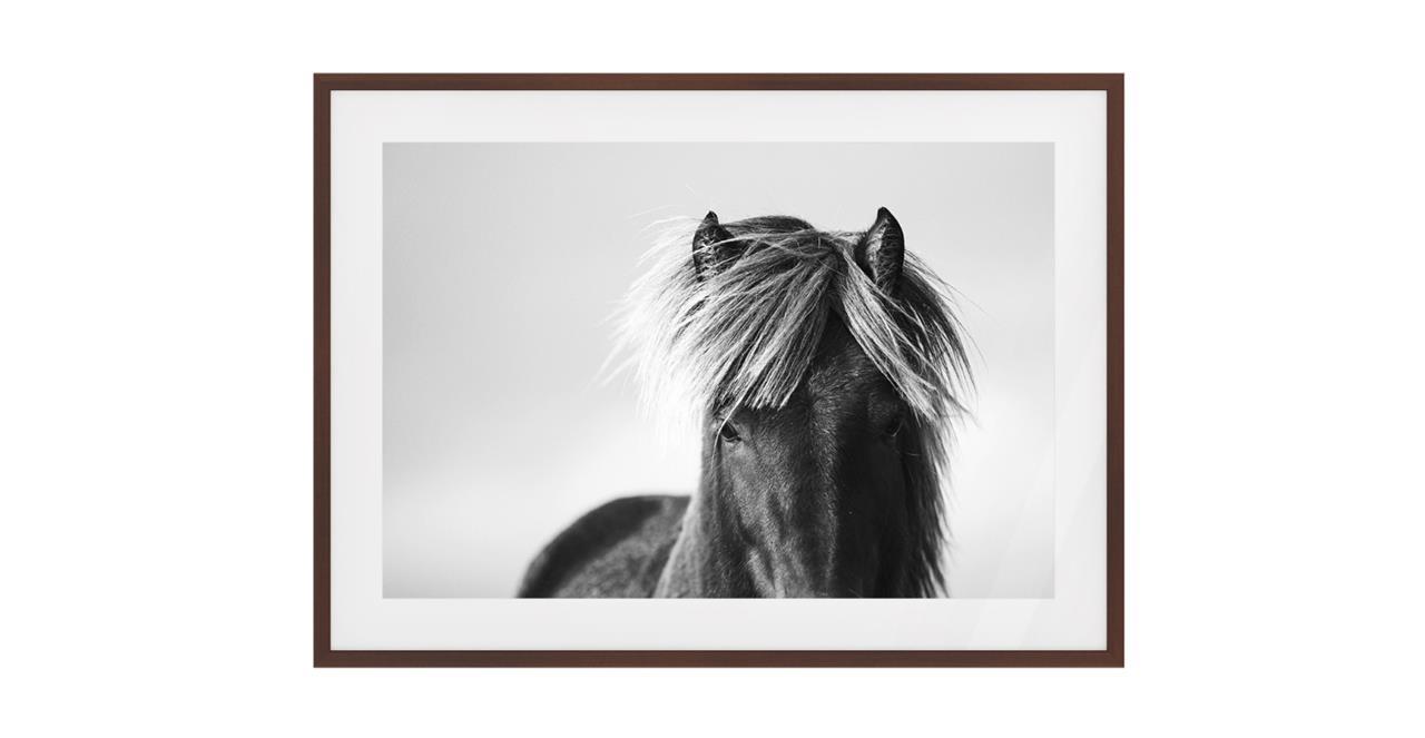 The Gallop Print Dark Brown Wood Frame Medium