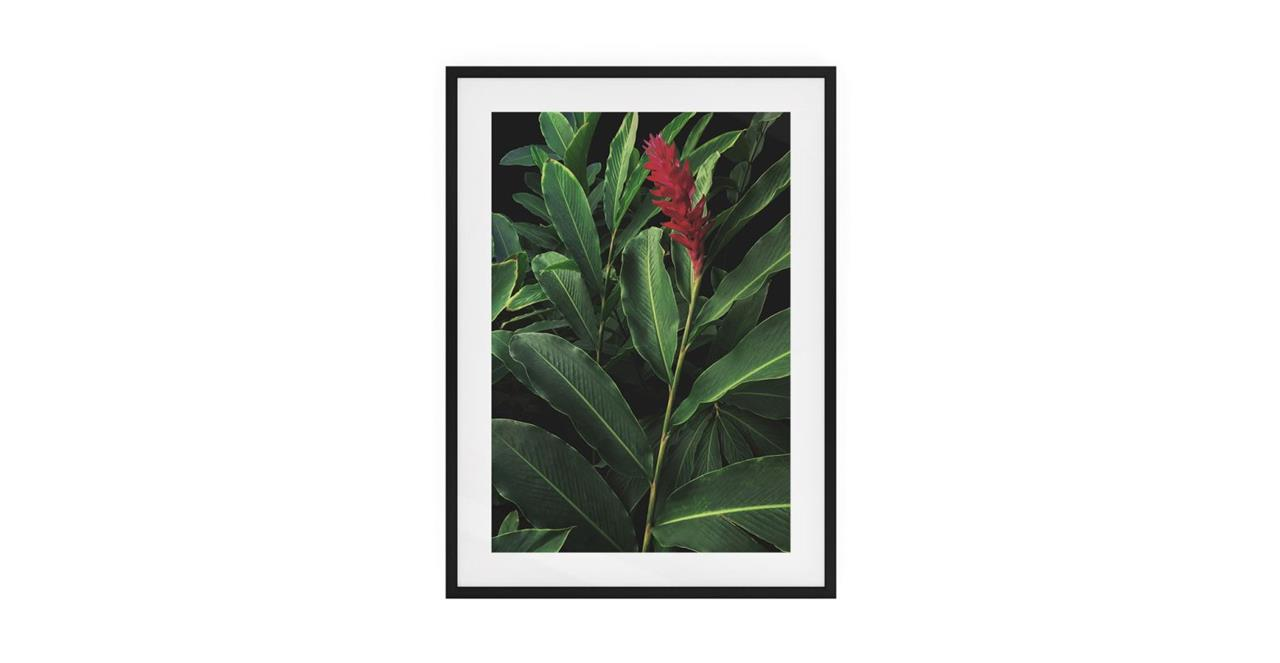 The Red Ginger Print Black Wood Frame Small