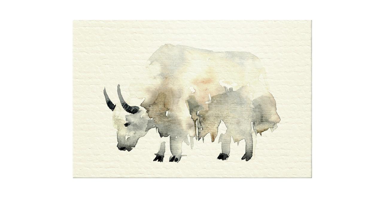 The Safari Print Canvas Medium Yak
