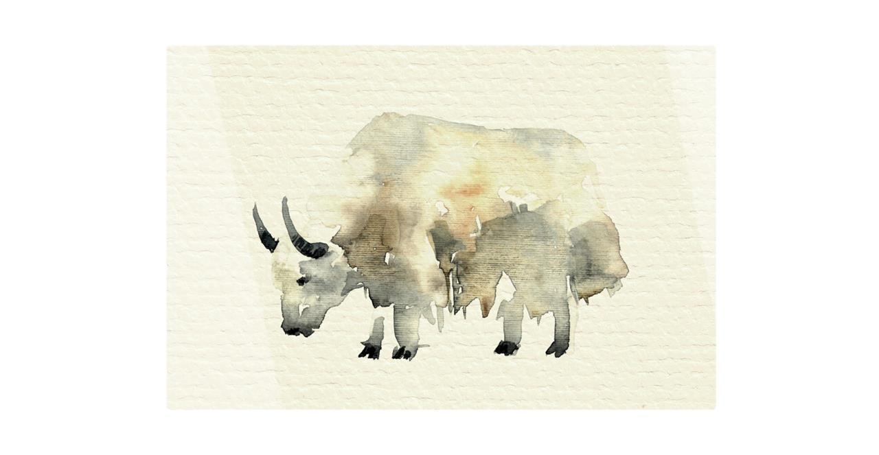 The Safari Print Metal Print Medium Yak